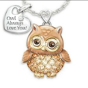 """NWOT Necklace """"owl always love you"""""""